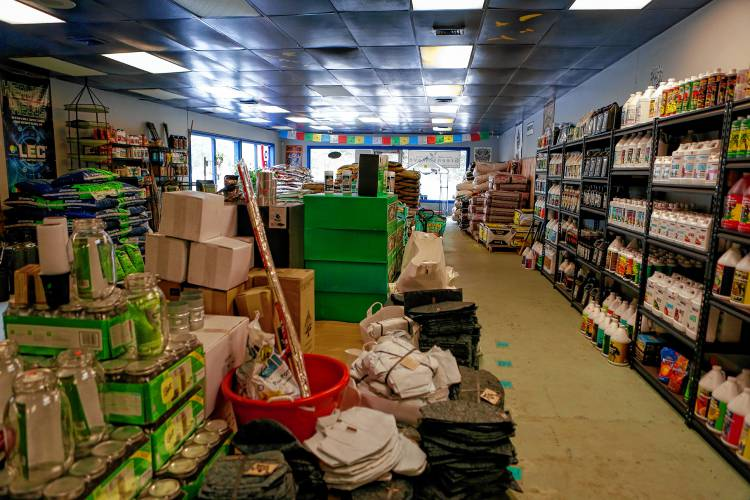 The Interior Of Green Wave Garden Supply And Hydroponics Is Shown Oct. 5,  2017 In Amherst U2014GAZETTE STAFF/SARAH CROSBY   Buy This Image