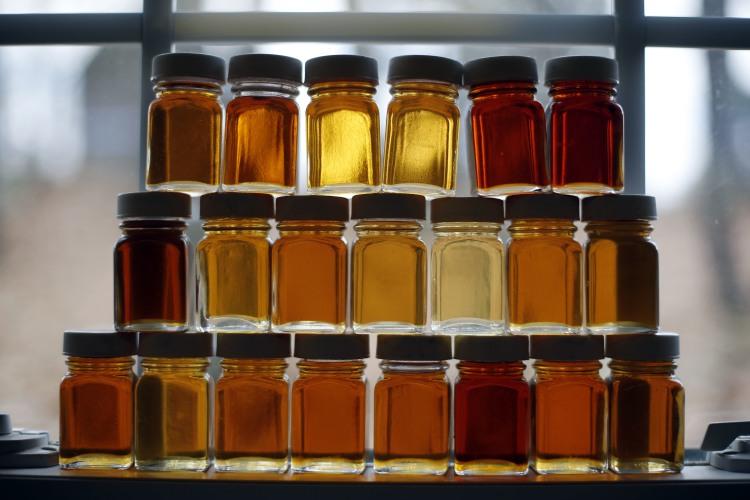 get growing it s primetime for maple syrup. Black Bedroom Furniture Sets. Home Design Ideas
