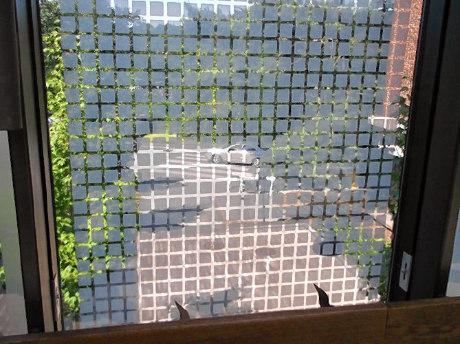 Applying Film Deters Birds From Fatal Strikes With Glass - Window decals to prevent bird strikes