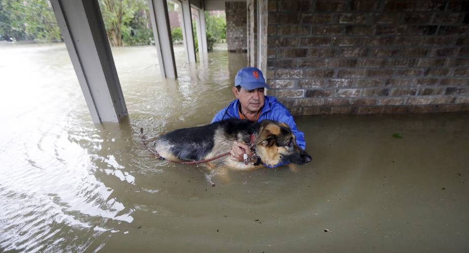 Will People After Harvey Get New Homes