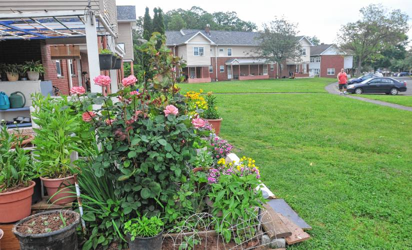 Tenants irked by Northampton Housing Authority crackdown on outside items, gardens