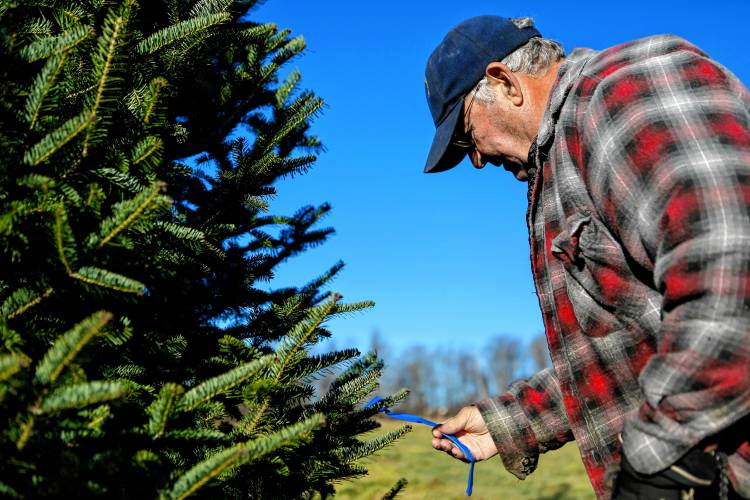 Christmas Tree Bill.After 40 000 Christmas Trees Clearview Farm S Bill And Jane