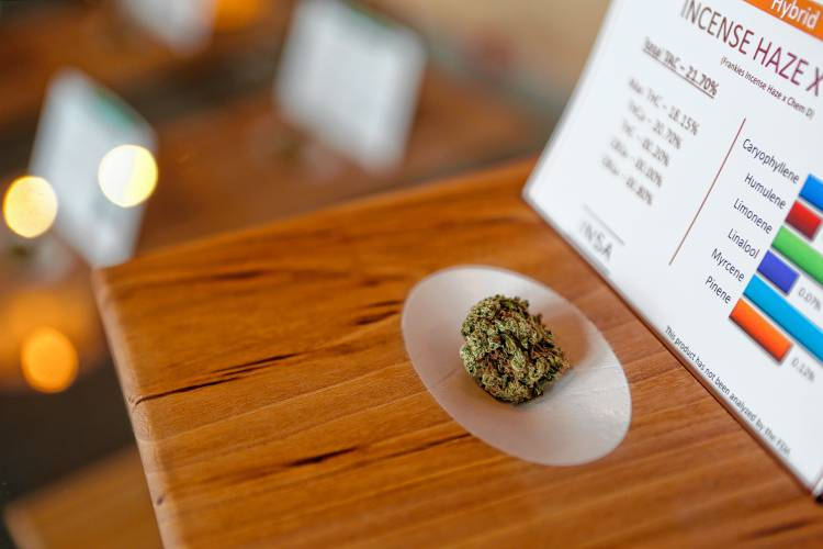 Shops Anxious Labs Oks Marijuana Meeting Local Retail Testing To Sell State Hope Aug At 23