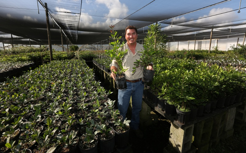 Miracle fruit: A Florida-grown berry comes to the rescue