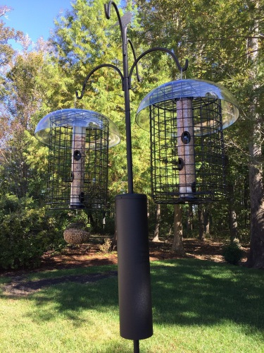An Advanced Feeder Pole System Features Four Hooks For Various Types Of Bird  Feeders. A Baffle On The Pole Deters Nuisance Wildlife. Kathy Van Mullekom